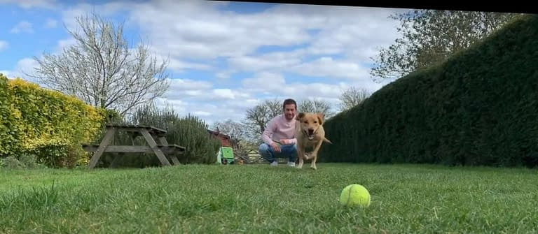 Crufts Extra: Happy Dogs