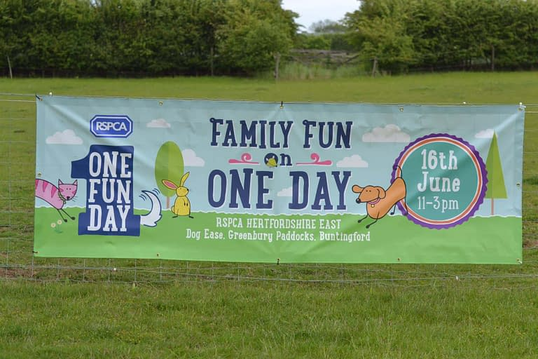 'One Fun Day' at Dog-ease